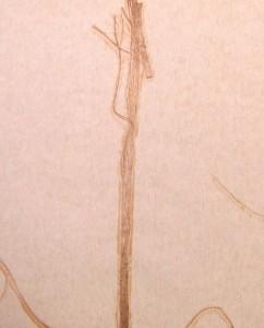 DSCN1647-pintado d eca na